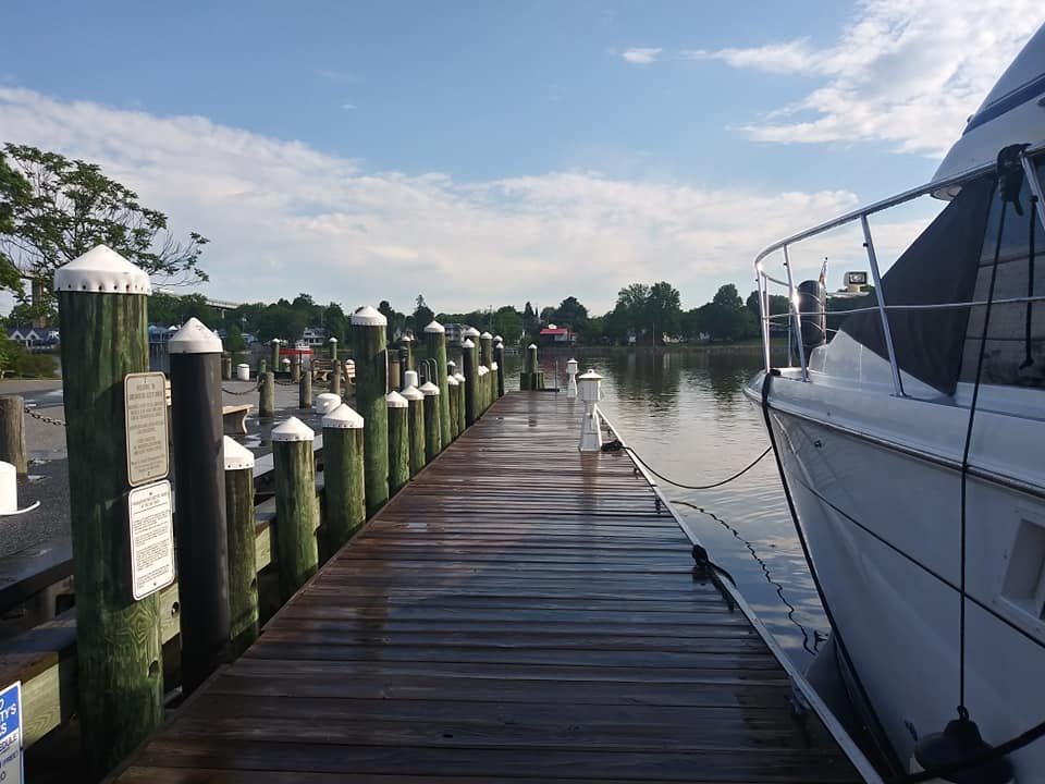 Free City Dock