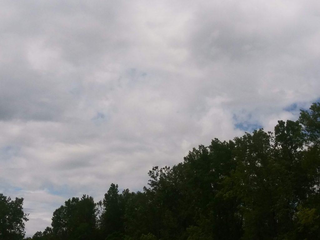 Come on blue sky